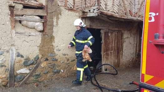 İtfaiye ekipleri yangında tavukları kurtardı