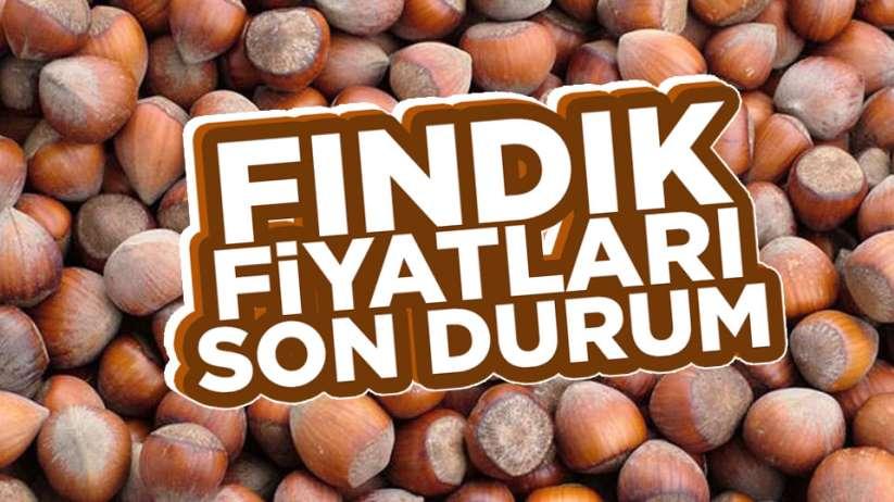 Güncel fındık fiyatları.. 12 Nisan Pazar Samsun fındık fiyatları ne kadar?