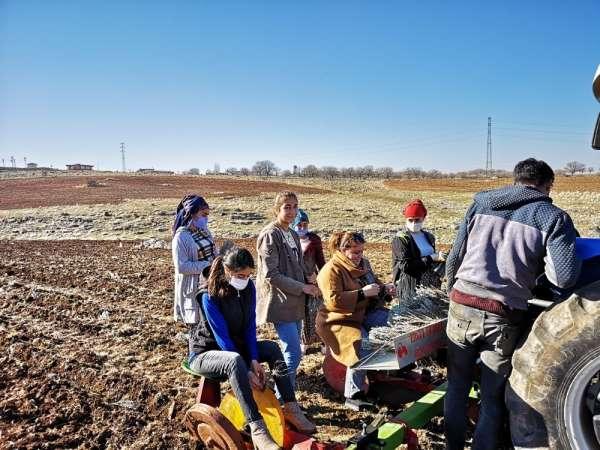 'Bir Dünya Üreten Kadın Projesi'nde lavanta fideleri toprakla buluştu