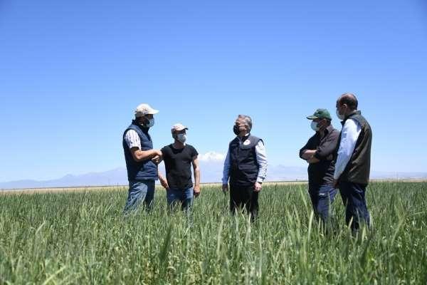 Kayseride 30 yıldır kullanılmayan araziler tarıma kazandırıldı