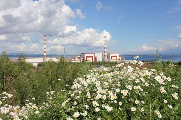 Dünya Nükleer Derneği Raporu: Küresel sorunların çözümünde doğru adres nükleer enerji