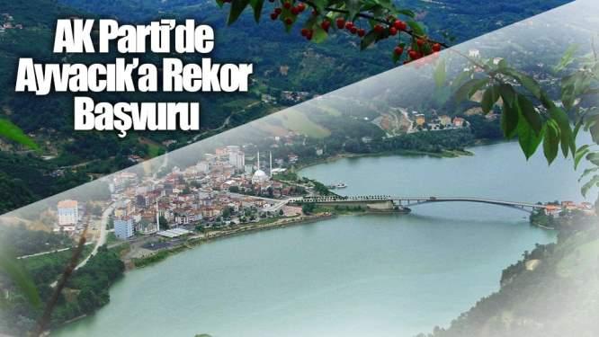 AK Parti'de Ayvacık'a Rekor Başvuru