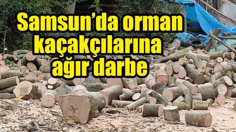 Samsun Alaçamda 30 ton kaçak orman emvali ele geçirildi