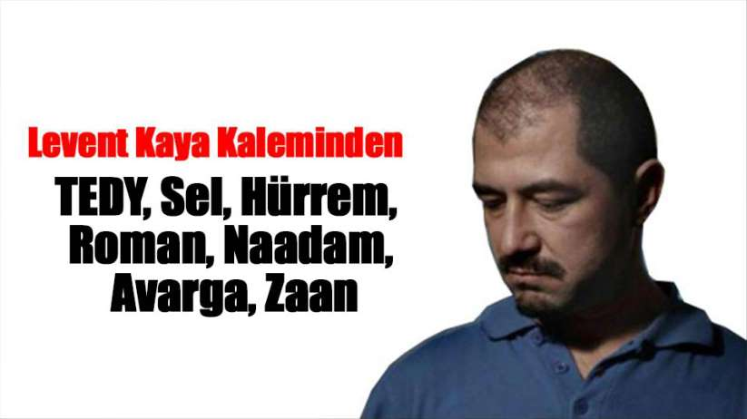 TEDY, Sel, Hürrem, Roman, Naadam, Avarga, Zaan
