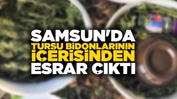 Samsun'da turşu bidonlarının içerisinden esrar çıktı
