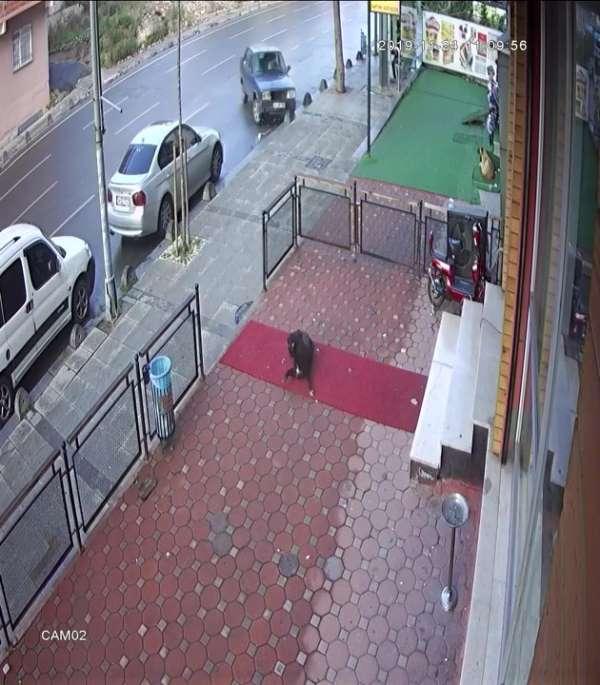 (Özel) Sancaktepe'de film sahnelerini aratmayan kaza kamerada