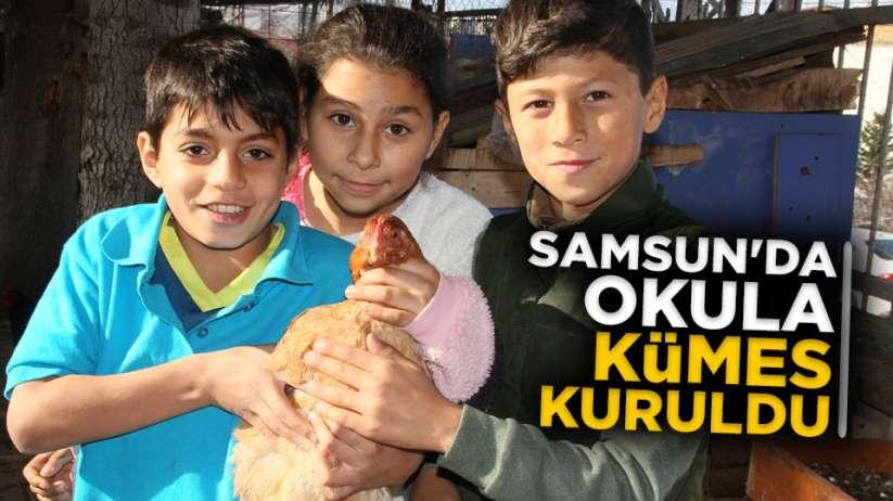 Samsun'da okula kümes kuruldu