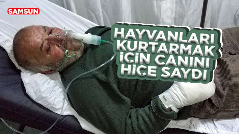Samsun'da yaşlı adam hayvanları kurtarmak için canını hiçe saydı