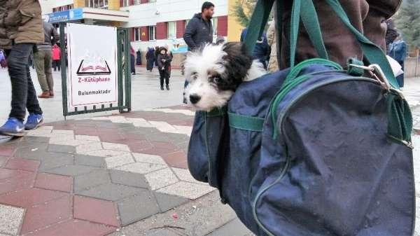 Yavru köpeğini spor çantasında taşıyor