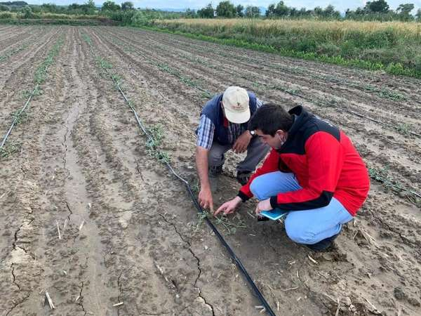 Mustafakemalpaşa'da çiftçiye destek hız kazandı