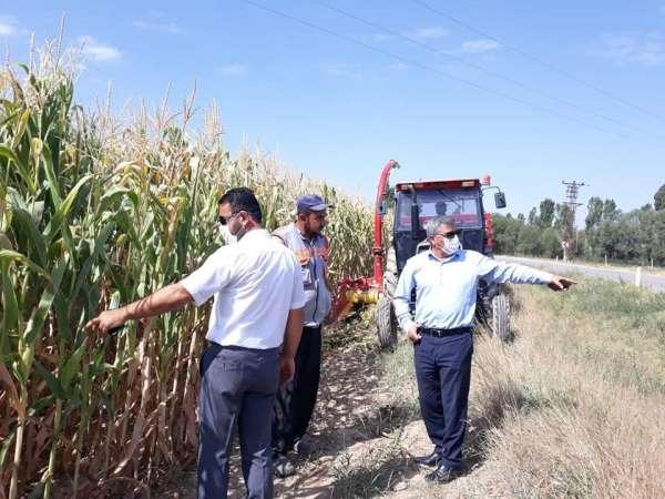Slajlık mısır üretimi ilçe ekonomisine katkı sağlıyor