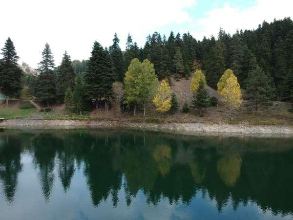 Türkiye'nin en kuzeyi Sinop'ta sonbaharın renk cümbüşü