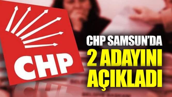 Samsun Haberleri: CHP Samsunda 2 Adayını Açıkladı