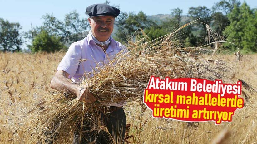 Atakum Belediyesi, kırsal mahallelerde üretimi artırıyor