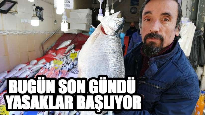 Samsun'da sezonun son balıkları 15 liradan satılıyor