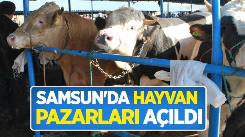 Samsun'da hayvan pazarları açıldı