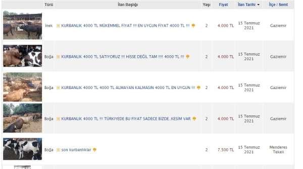 İnternet ilanıyla kurbanlık satışı