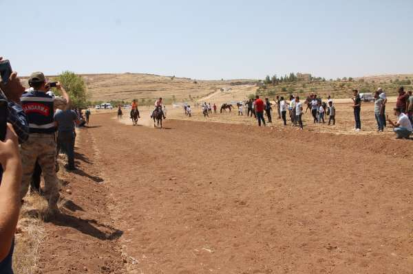 Mardinde rahvan atı yarışı düzenlendi
