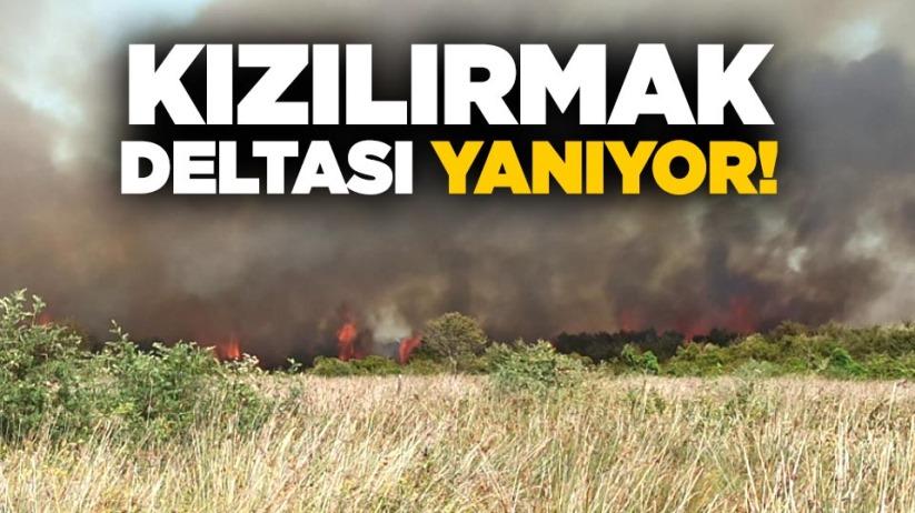 Kızılırmak Deltası yanıyor!