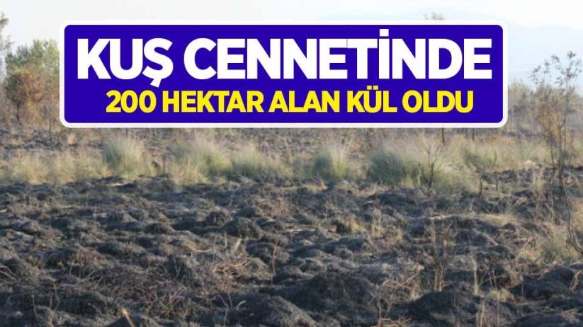 Kuş Cennetinde 200 hektar alan kül oldu
