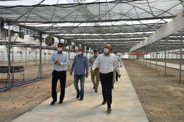 Manisa Büyükşehir Belediyesi üreterek tasarruf sağlayacak