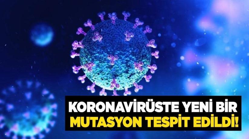 Koronavirüste yeni bir mutasyon tespit edildi!
