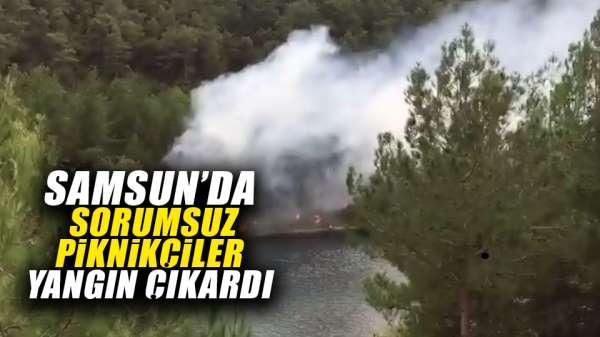 Samsun'da piknikçiler yangın çıkardı