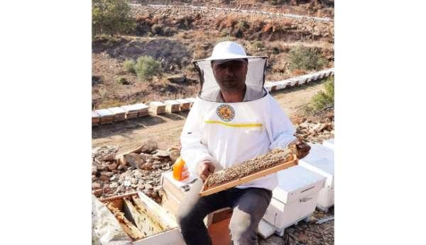 2021 yılı arı fiyatları belirlendi
