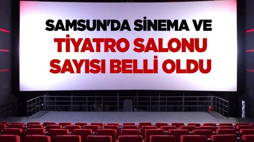 Samsunda sinema ve tiyatro salonu sayısı belli oldu