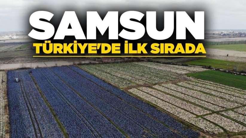 Samsun, Türkiye'de ilk sırada