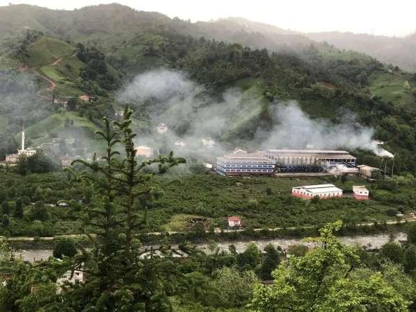 Tarım ve Orman Bakanlığının ifşası çaydaki boyayı ortaya çıkardı