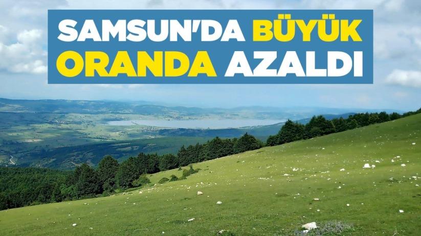 Samsun'da büyük oranda azaldı