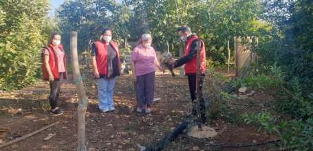 Kadın çitçiler: ' Devlet teşviklerinden yararlanıp tarımı hep birlikte yaşatalı