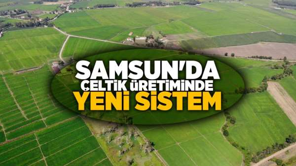 Samsun'da Çeltik üretiminde yeni sistem
