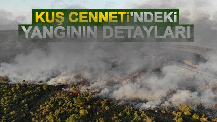 Samsun Kızılırmak Deltası Kuş Cenneti'ndeki yangının detayları