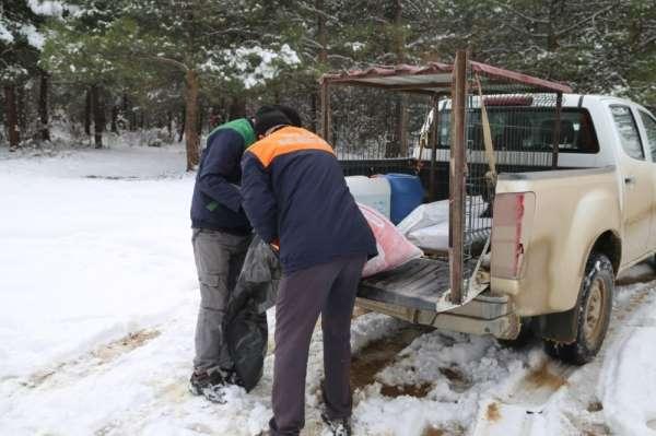 Erbaa Belediyesi kış şartlarında yiyecek bulmakta zorlanan yaban hayvanları için çalışma yaptı