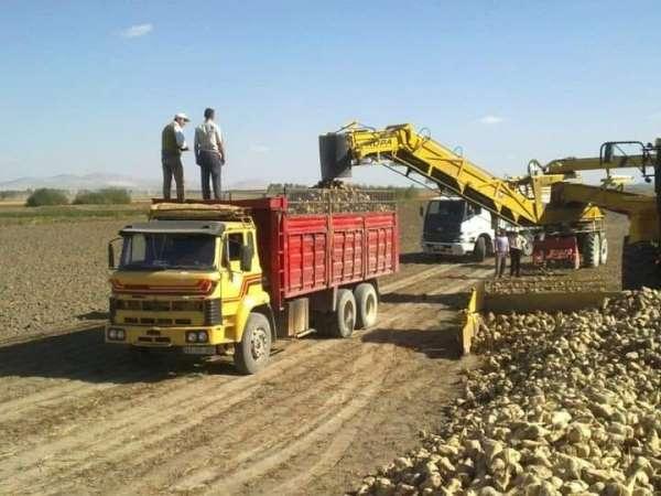 Altıntaşta hedef 200 bin ton pancar üretimi