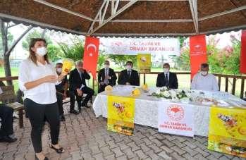 Üreticilere Akdeniz meyve sineği tuzağı dağıtıldı