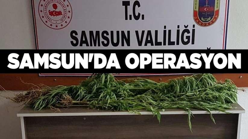 Samsun'da operasyon