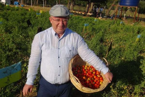 Ata tohumları Menteşe Belediyesine ödül getirdi