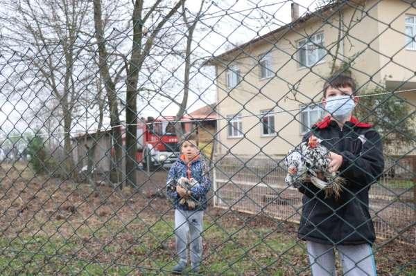 Kazan dairesi patladı, yaptıkları ilk iş kümesten tavukları kurtarmak oldu