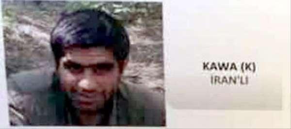 'Kawa' kod adlı terörist Giresun'da teslim oldu