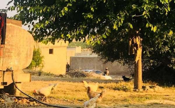 Şanlıurfa'da terör operasyonu: 9 gözaltı