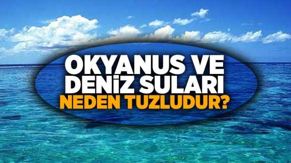 Okyanus ve Deniz Suları Neden Tuzludur?