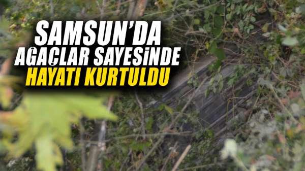 Samsun'da ağaçlar sayesinde hayatı kurtuldu