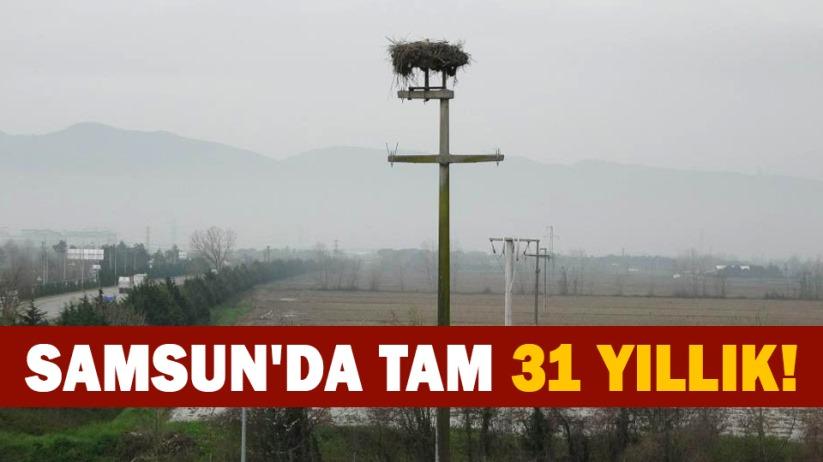 Samsunda tam 31 yıllık!