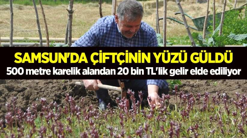 Samsun'da çiftçinin yüzü güldü