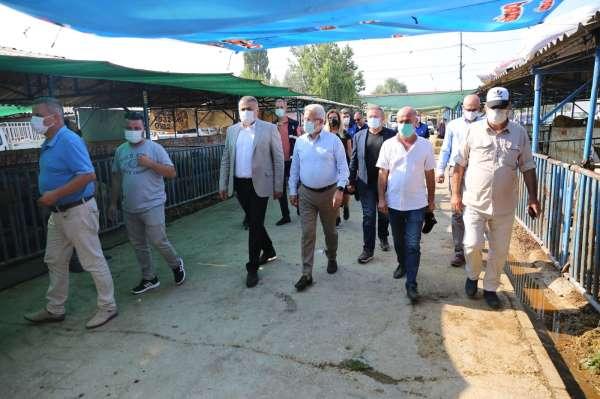 Başkan Erdemden hayvan pazarına ziyaret