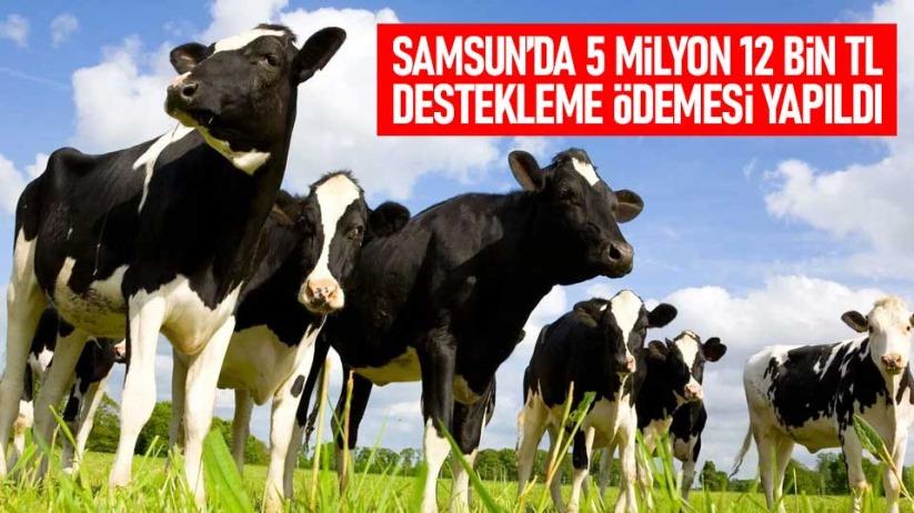 Samsunda 5 milyon 12 bin TL destekleme ödemesi yapıldı