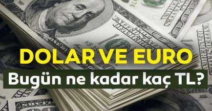 Dolar kuru bugün ne kadar? (18 Temmuz 2020 dolar ve euro fiyatları)